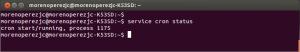 service cron status