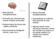 cerebrovsmicro