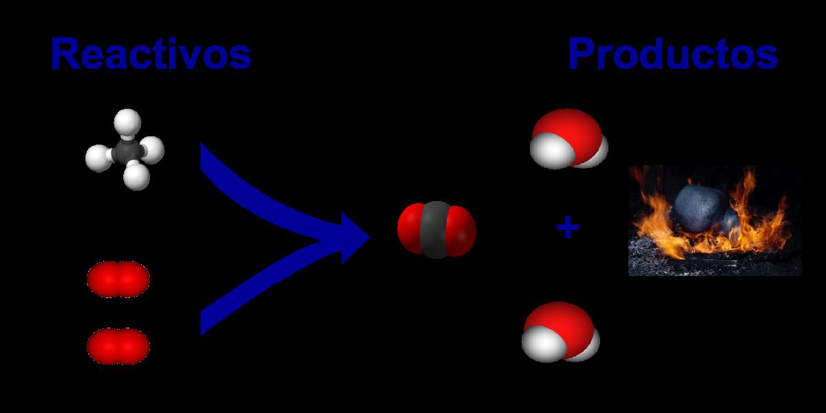 reactivos y productos